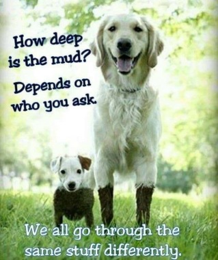 how-deep-is-the-mud